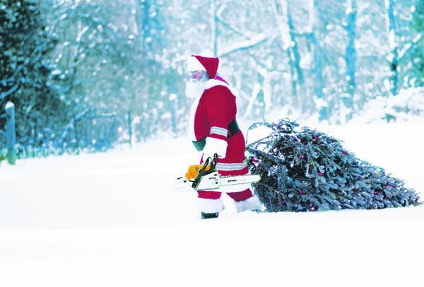 Wann weihnachtsbaum abbauen